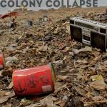 Colony Collapse